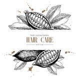 Vector set of hair care ingredients. Organic hand drawn elements. Template for cocoa beans. Stock Image