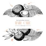 Vector set of hair care ingredients. Organic hand drawn elements. Template for coconut. Stock Image