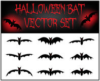 Vector set of Halloween bat silhouette. Illustration  on white background Royalty Free Stock Photo