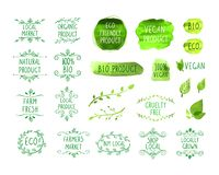 Vector Set of Hand Drawn Design Elements, Eco Natural Product, Farmers Market, Green Watercolor Drawings, Isolated. vector illustration
