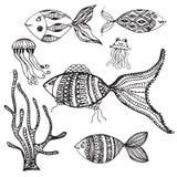 Vector set of hand drawn fish Stock Image
