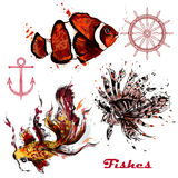 Vector set of hand drawn fishes in watercolor style. A collection of vector watercolor fishes painted by ink spots Royalty Free Stock Image