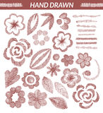 Vector set of hand drawn floral elements. Royalty Free Stock Photo