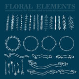 Vector set of hand drawn floral squared and rounded frames and decorative elements and ornaments. Arrows and ribbons collection. Floral branches and elements Royalty Free Stock Photo