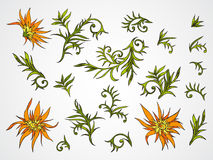 Vector set of hand drawn flowers, branches and leaves. Royalty Free Stock Images