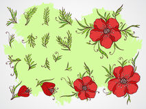 Vector set of hand drawn flowers, branches and leaves on textured background. Stock Photography