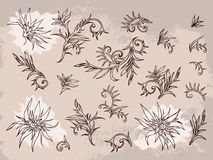 Vector set of hand drawn flowers, branches and leaves with textured watercolor element. Royalty Free Stock Image