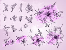 Vector set of hand drawn flowers, branches and leaves with textured watercolor element. Stock Photography