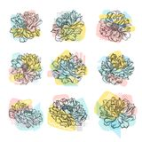 Vector set of hand drawn flowers with colorful abstract backdrop. Line art. Elements for t-shirt print or textile. Collection of hand drawn flowers with colorful stock illustration