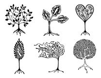 Vector set of hand drawn illustration, decorative ornamental stylized tree. Black and white graphic illustration isolated on the w Stock Images