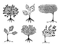 Vector set of hand drawn illustration, decorative ornamental stylized tree. Black and white graphic illustration isolated on the w Royalty Free Stock Photo