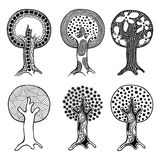 Vector set of hand drawn illustration, decorative ornamental stylized tree. Black and white graphic illustration isolated on the w Royalty Free Stock Photography
