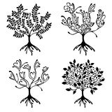 Vector set of hand drawn illustration, decorative ornamental stylized tree. Black and white graphic illustration isolated on the w Stock Photo