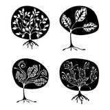 Vector set of hand drawn illustration, decorative ornamental stylized tree. Black and white graphic illustration isolated on the w. Hite background. Inc drawing stock illustration