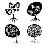 Vector set of hand drawn illustration, decorative ornamental stylized tree. Black and white graphic illustration isolated on the w. Hite background. Inc drawing royalty free illustration