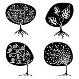 Vector set of hand drawn illustration, decorative ornamental stylized tree. Black and white graphic illustration isolated on the w. Hite background. Inc drawing Royalty Free Stock Photography