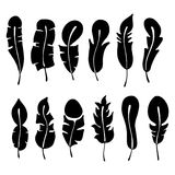 Vector set of hand drawn illustration, decorative stylized feather. Black and white graphic, silhouettes illustration, isolated on Royalty Free Stock Photography