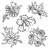 Vector set of hand drawn insects. Butterfly, ladybug, wast with flowers, leaves, honeycombs Stock Photography