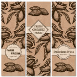 Vector set of hand-drawn patterns with almonds in a retro style. Stock Photography
