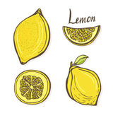 Vector set of hand drawn sketch lemons.  yellow fruits in vector. Creative stickes Royalty Free Stock Images