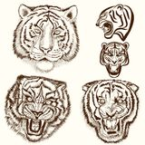 Vector set of hand drawn tattoo with tiger animals Royalty Free Stock Photo