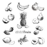 Vector set of hand drawn vintage  fruits and Royalty Free Stock Images
