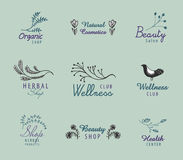 Vector set of hand drawn vintage logos with florals, bird.. Organic shop, wellness club, beauty salon, herbal, spa, organic badges, identity icons and drawn tag Royalty Free Stock Photography