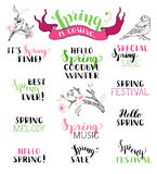 Vector set of hand-written spring brush lettering. Hello spring. Goodbye winter. It's spring time. Best spring ever. Spring melody. Special spring sale. Spring royalty free illustration