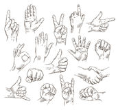 Vector set of hands and gestures - outline illustration. Hand sketch the set of elements isolated on white background. vector illustration Royalty Free Stock Photos