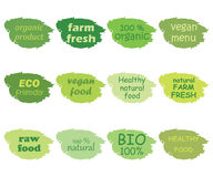 Vector set of healthy organic food labels Royalty Free Stock Photo