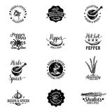Vector set of herbs and spices labels, badges  Royalty Free Stock Photography