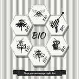Vector set for honey sketches Royalty Free Stock Photography