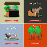 Vector set of horse riding concept posters in flat style Royalty Free Stock Photos