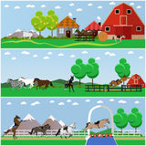 Vector set of horse riding, taming horses and farming concept banners, posters, flat style Stock Photos
