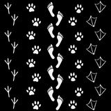Vector set of human and animal, bird footprints icon. Collection of bare human foots, cat, dog, bird, chicken, hem, crow, duck footprint Royalty Free Stock Photos