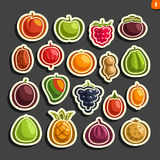 Vector Set icons of colorful Fruits and Berries Stock Image