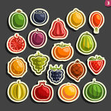 Vector Set icons of colorful Fruits and Berries Stock Images