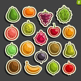 Vector Set icons of colorful Fruits and Berries. Collection of exsotic fruit primitive logos isolated on black background, set of cartoon simple stickers for Royalty Free Stock Photo