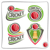 Vector set icons for Cricket game Stock Images