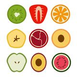 Vector Set of Icons of Flat Seasonal Fruits in Cut vector illustration
