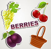 Vector set of icons/strikers: Berries Stock Images