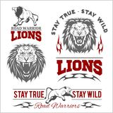 Vector set of illustrated lions themed sport logo, patch, icon, or badge with various style Stock Photography