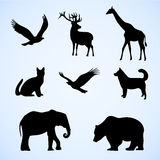 Vector set of illustration with wild and pet animals. Silhouettes. Giraffe, elephant, eagle, hawk, deer, dog, cat, bear for your animal and nature projects stock illustration