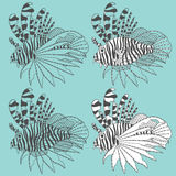 Vector set of illustrations with lionfish. Isolated object. EPS10 Stock Photos
