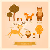 Vector set of images of forest animals. Vector set of images of deer, bear, bird, fox and trees Stock Image