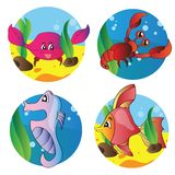 Vector set of images of the marine life Stock Photo