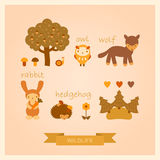 Vector set of images of wolf, owl, hedgehog, rabbit and trees. Vector set of cartoon images of wolf, owl, hedgehog, rabbit and trees Royalty Free Stock Image