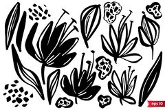 Vector set of ink drawing herbs, flowers, monochrome artistic botanical illustration, isolated floral elements, hand. Drawn illustration. Monochrome royalty free illustration