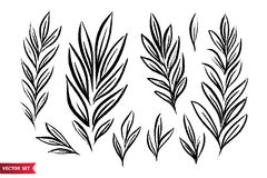 Vector set of ink drawing wild plants, herbs, monochrome artistic botanical illustration, isolated floral elements, hand. Drawn set royalty free illustration