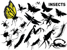 Vector set of insects. Vector silhouette set for some insects Royalty Free Stock Photography